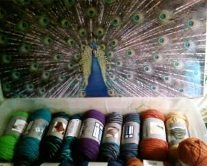 peacock-color-yarns